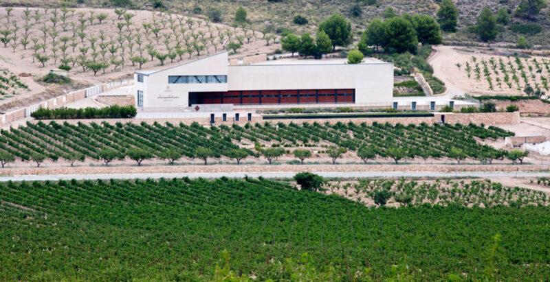 vinos alicante sierra salinas